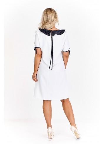 Elegancka, trapezowa sukienka z kołnierzykiem vintage Plus Size
