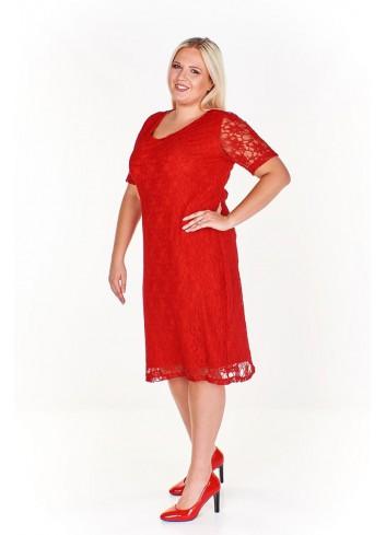 Sukienka koktajlowa koronkowa Plus Size